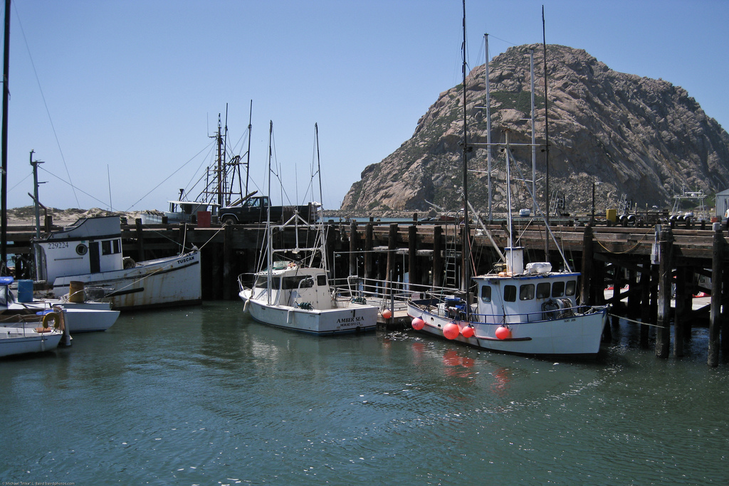White fishing boats moored at the T-Pier in Morro Bay, California, with a big rock behind them