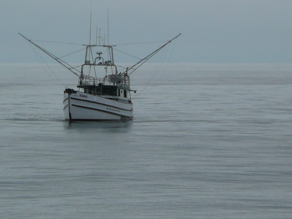 A salmon troller out at sea