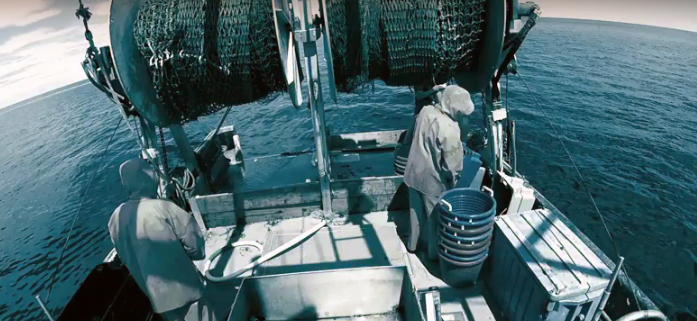 Image from an electronic monitoring system showing crew members aboard a trawl vessel