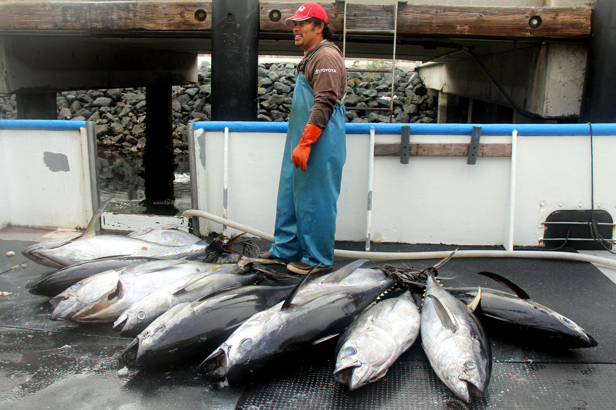 A man stands on a boat deck surrounded by tuna.