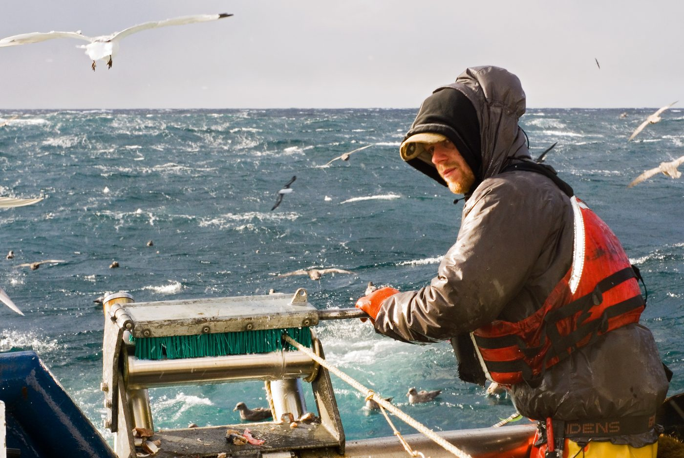 A commercial fisherman fishing for sablefish.