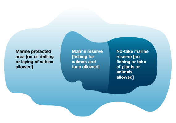Diagram showing the difference between marine protected areas and other types of protected area